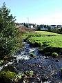 Meadow in Kilmacolm - geograph.org.uk - 696967.jpg
