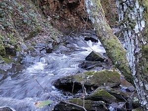 Mil torrentes en la montaña.jpg