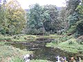 Mill pond at Hangingshaw Burn - geograph.org.uk - 569335.jpg