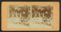 Mineral spring, soldier's home, O, from Robert N. Dennis collection of stereoscopic views.png