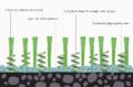 Modernartificialgrass2.png