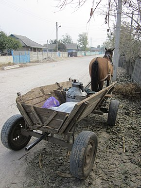 Moldova Dancu Horse and carriage.jpg