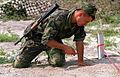 Moldovan soldier.jpg