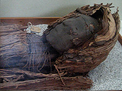 Chinchorro mummies - Wikipedia