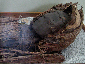 Muisca mummification - The oldest mummies of South America come from the northern Chilean Chinchorro culture