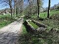 Montesquieu-Avantès - Chemin de la Quère - 20190328 (1).jpg