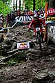 Mountain Bike UCI World Cup Maribor 2010 - panoramio.jpg