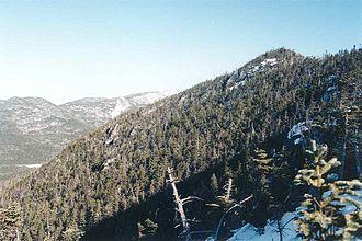 Allen Mountain (New York) - Allen Mountain summit