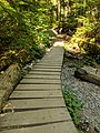 Mt Fromme - Roadside Attraction trail 01.jpg