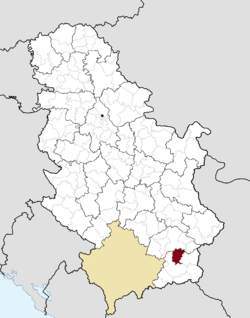 Location of the municipality of Vladičin Han within Serbia