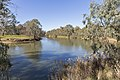 Murray River on Gateway Island, looking towards NSW (3).jpg