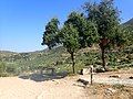 Mycenae view.jpg