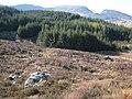 Mynydd Glan Llyn y Forwyn. - geograph.org.uk - 398312.jpg