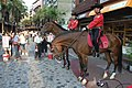 NTPD Mounted Police Squad at Yingge Old Street 20110821.jpg