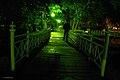 Nałęczów w nocy.jpg