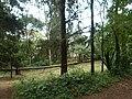 Nairobi Arboretum Park 16.JPG
