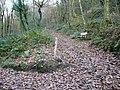 Nature reserve footpath - geograph.org.uk - 1063069.jpg
