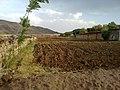Navidhand Valley, Khyber Pakhtunkhwa , Pakistan - panoramio (26).jpg
