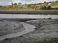 Netherton Point, Teign estuary - geograph.org.uk - 1188654.jpg