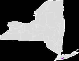 New Yorks 8th State Senate district American legislative district