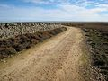 New track near Doctor's Gate - geograph.org.uk - 268861.jpg