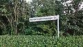 Norderfriedrichskoog 1.JPG