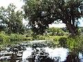 Noteć - panoramio (9).jpg