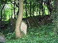 Nowy Cmentarz Zydowski - Przemysl17.jpg