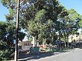 OIC eastwood matilda park.jpg