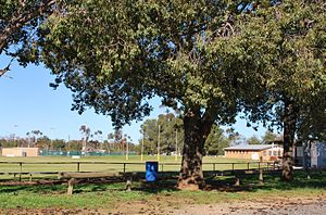 Oaklands, New South Wales - Image: Oaklands Football Ground 1