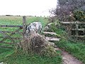 Old Cornish stile, approach to the Merry Maidens - geograph.org.uk - 95531.jpg