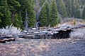 Old Railroad Tracks Undercut by River dyeclan.com - panoramio.jpg
