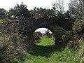 Old railway bridge - geograph.org.uk - 174552.jpg