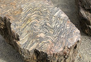 Gneiss - Orthogneiss from the Czech Republic