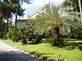Orto botanico di Napoli 210.JPG