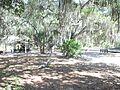 Oscar Scherer SP picnic02.jpg