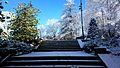 Oyonnax - Parc René Nicod (9622511455).jpg