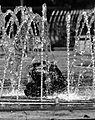 PARQUE LINEAL ZAMORA (19299692893).jpg