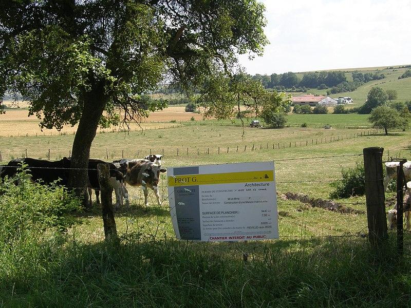 Commune de Réville-aux-Bois (département de la Meuse). Haut du lieu-dit «la Pillière». Parcelle ZD 68. Affichage d'un permis de construire sur le terrain, de manière visible de l'extérieur, par les soins de son bénéficiaire, dès la notification de l'arrêté (art. R.* 424-15 du code de l'urbanisme).