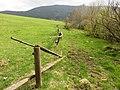 PR Brčálnické mokřady pod osadou Brčálník, rozmezí pastviny a rezervace, v pozadí Špičák, 2, duben 2017.jpg