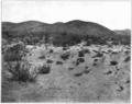 PSM V75 D452 Desert landscape in zacatecas.png