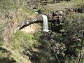 Paddy River Falls out side Tumbarumba NSW 05-01-2009.jpg