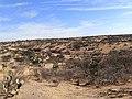 Paisaje de semidesierto (Dolores Hidalgo, Guanajuato).jpg