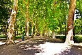 Parc Élisabeth.jpg