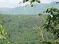 Parc national de la Guadeloupe.jpg