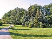 Park Zrodliska Lodz 1.JPG