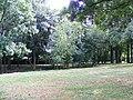 Park in Klimkówka bk04.JPG