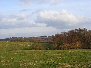 Berkshire, Buckinghamshire and Oxfordshire Wildlife Trust