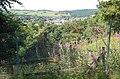 Peebles from Venlaw quarry - geograph.org.uk - 1384871.jpg
