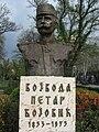Petar Bojovic Nis2.jpg